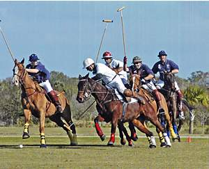 Polo Players